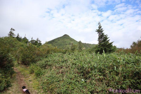 カニンヘンダックス登山