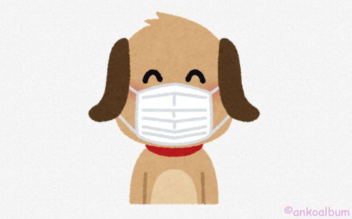 犬の散歩 マスク