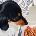 犬の手作りジャーキー