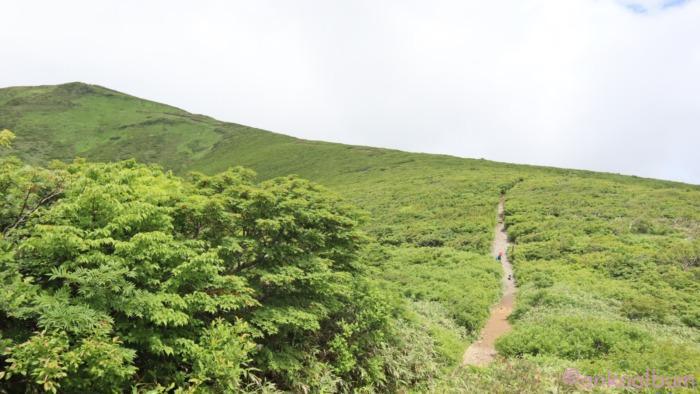 2020年7月栗駒山