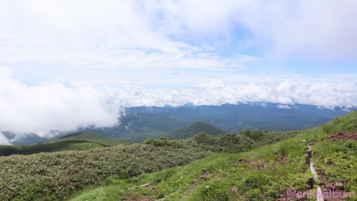栗駒山2020年7月