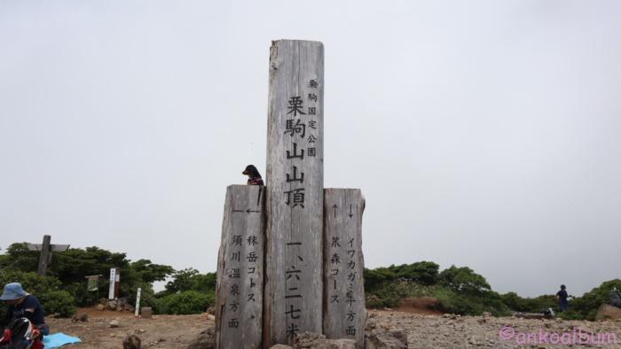 わんこと登山