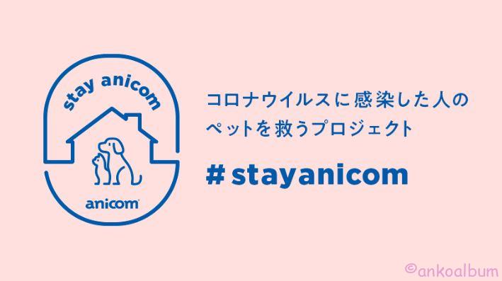 stayanicom