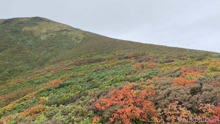 栗駒山2020.9.26