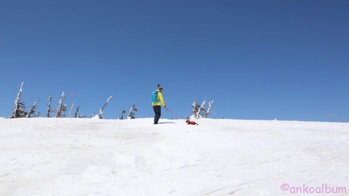 カニンヘンダックス登山4か月