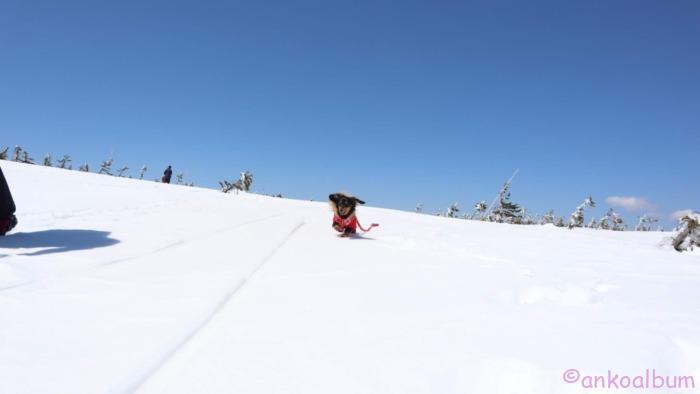 カニンヘンダックス雪山