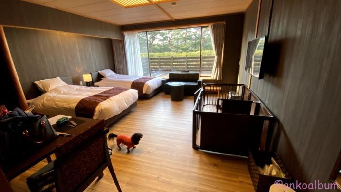 浄土ヶ浜パークホテル ペットルーム