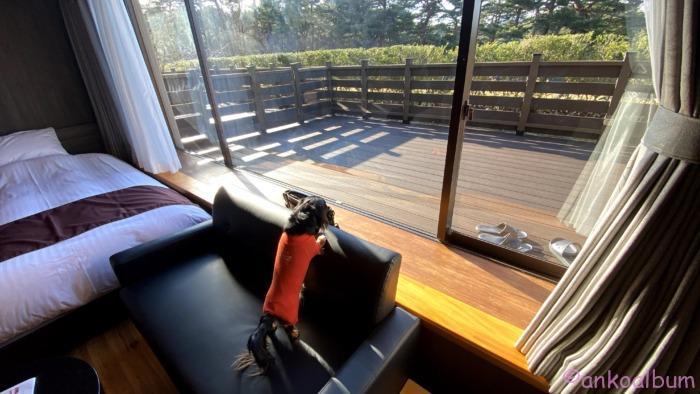 浄土ヶ浜パークホテル 犬